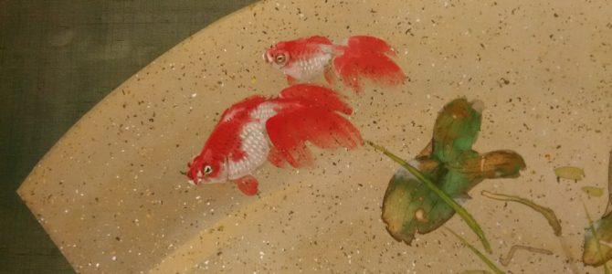 なんとも可愛く、優雅にフリフリ…金魚の掛け軸