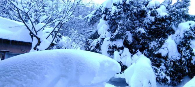 大雪でお店に行けません…