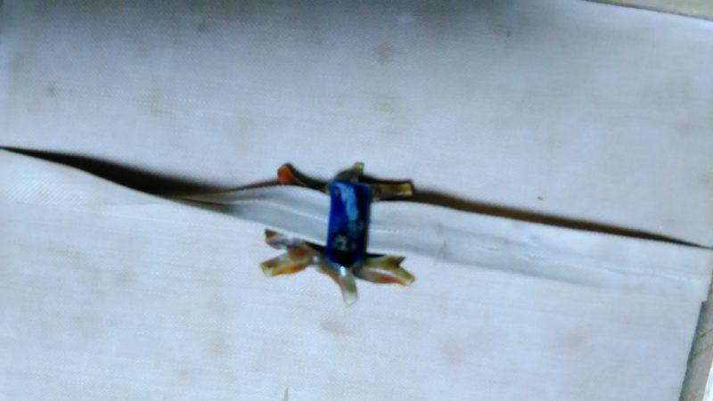 黄金虫の帯留め
