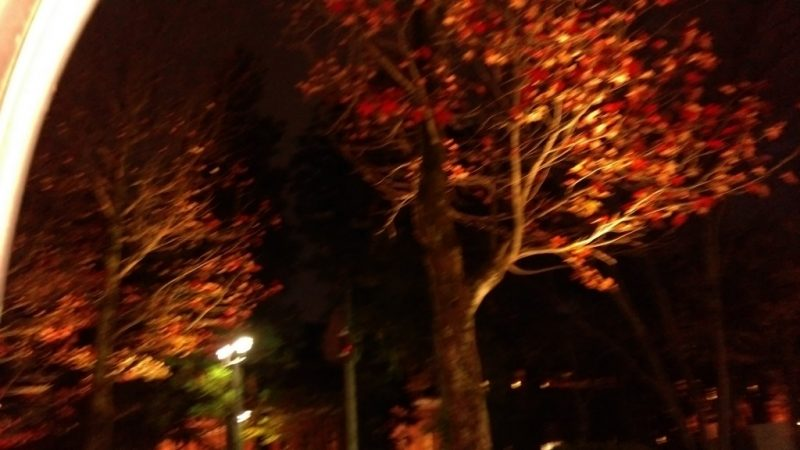 金沢城址公園ライトアップ